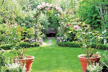 Jounior observer sunday sri lanka for Garden designs in sri lanka