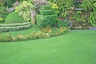 Features sri lanka for Garden designs in sri lanka