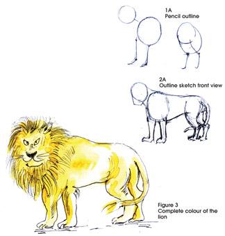 Sundayobserver Lk Jounior Observer Painting A Lion 117+ most legendary & amazing lion tattoo designs. sunday observer